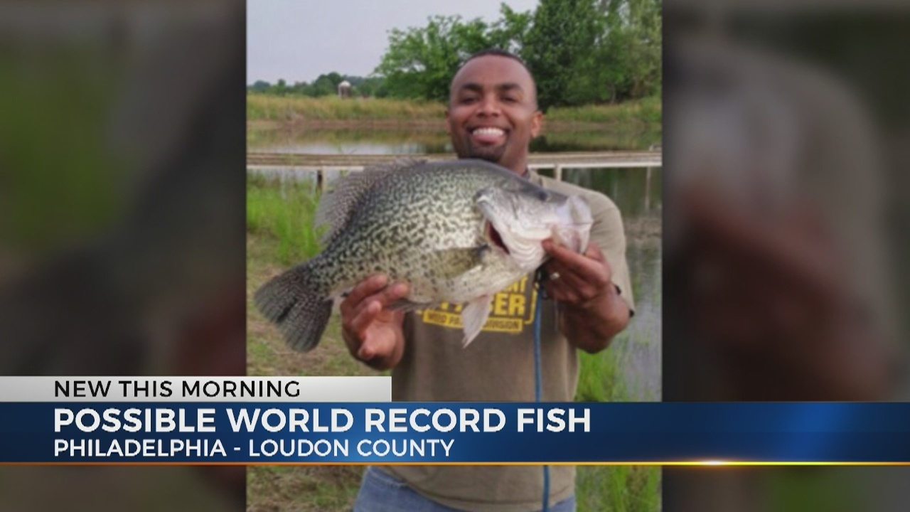 East Tennessee fisherman may have caught world record crappie