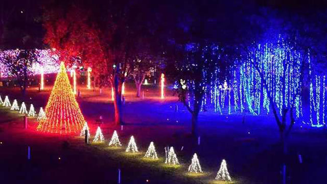 photo - Dancing Lights Of Christmas' Opens Friday In Lebanon