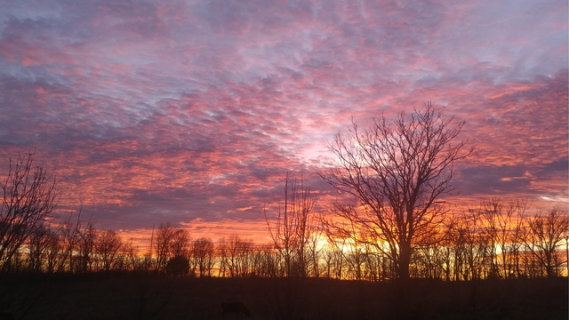PHOTOS: Sunrise and sunsets from first weekend in January
