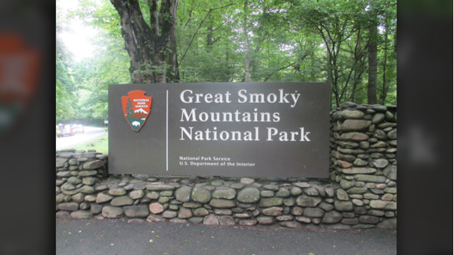 Autopsy: Man overdosed on meth in Great Smoky Mountains before bear scavenged his remains