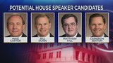 Potential House Speaker candidates