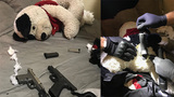 Tennessee teens arrested with 3 loaded guns hidden in teddy bear